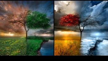 seasons-1024x575