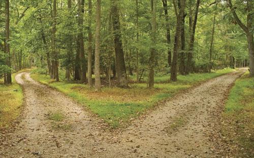 2-paths